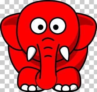 Elephant Joke Elephant In The Room Cuteness PNG