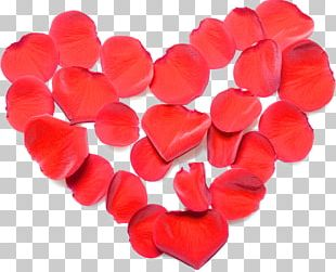 Valentine's Day Heart Love Gift PNG