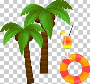 Coconut Euclidean Tree PNG