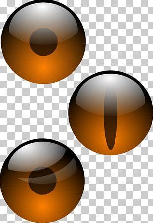 Light Human Eye Iris Visual Perception PNG