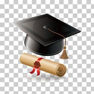 Graduate Diploma Graduation Ceremony Bachelors Degree PNG