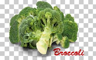 Broccoli Vegetarian Cuisine Cruciferous Vegetables Portable Network Graphics PNG