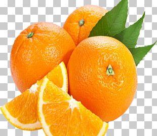 Juice Orange Drink Peel Bitter Orange PNG