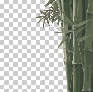 Bamboo Bamboe Leaf Euclidean PNG
