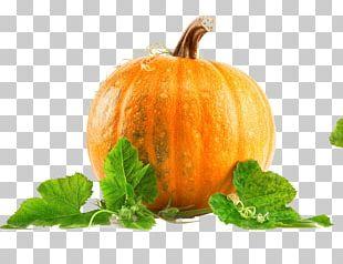 Pumpkin Pie Health Pumpkin Seed Nutrition PNG
