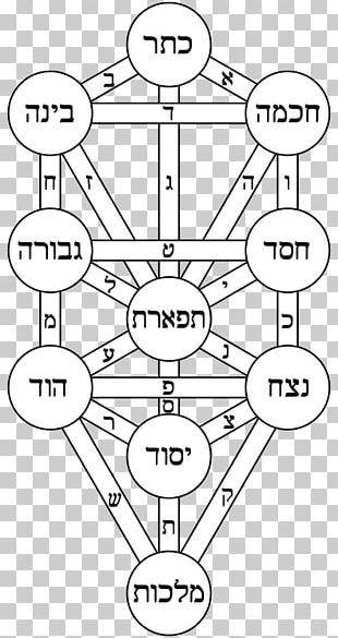 Tree Of Life Kabbalah Sefirot Hermetic Qabalah PNG