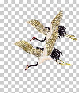 Crane Bird PNG