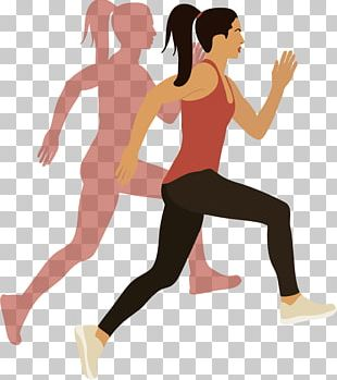 Physical Exercise Woman Euclidean PNG