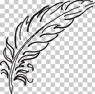 Drawing Feather Coloring Book Bird Pen PNG