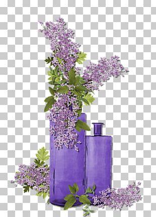 Purple Flower Violet Lavender PNG