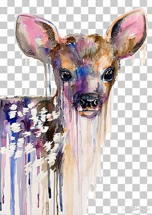 Deer Watercolor Painting Art Portrait PNG