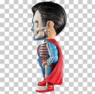 Superman Green Lantern Batman Wonder Woman DC Comics PNG
