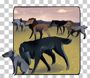 Canidae Horse Cat Dog Mammal PNG