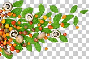 Superfood Vegetable Natural Foods PNG