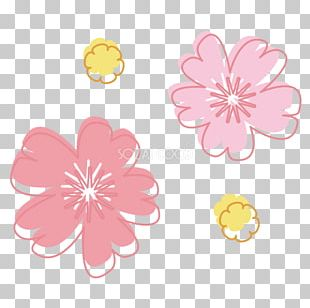 Cherry Blossom Book Illustration PNG