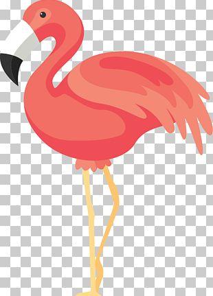 Flamingos Rendering Icon PNG