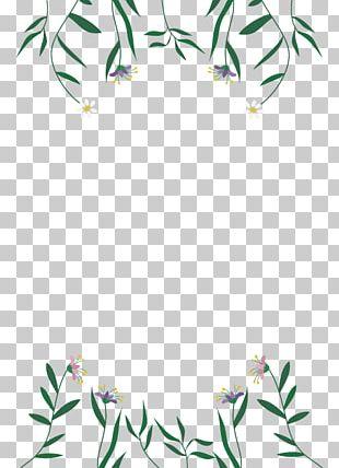 Floral Design Petal Leaf Chelsea Flower Show PNG