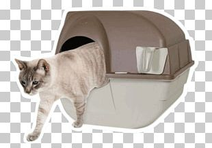 Cat Litter Trays Paw Box Pet PNG