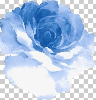 Watercolour Flowers Watercolor Painting Blue Rose PNG