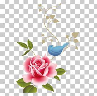 Rose Flower Pink Floral Design PNG