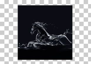 Canvas Print Painting Horse PNG