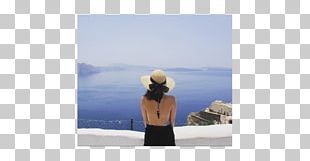 Stock Photography Vacation Travel PNG