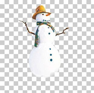Snowman Hat PNG