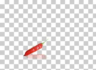 Bird's Eye Chili Serrano Pepper Tabasco Pepper Cayenne Pepper Chili Pepper PNG