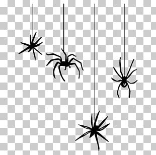 Spider Web Halloween Black House Spider PNG