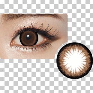 Circle Contact Lens Contact Lenses Brown Eye PNG