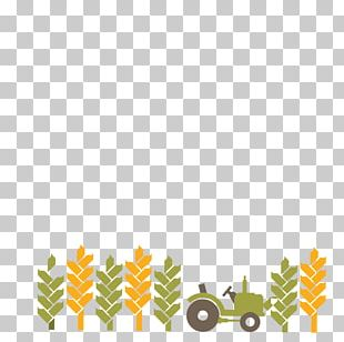 Tractor Bulldozer PNG