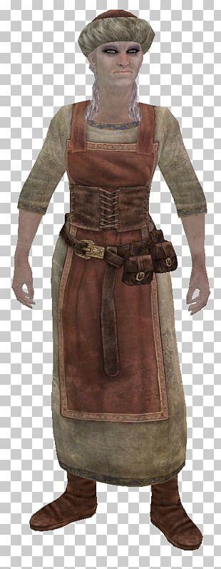 Armour The Elder Scrolls Adventures: Redguard The Elder