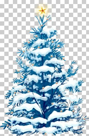 Christmas Ornament Christmas Decoration Spruce Christmas Tree Fir PNG