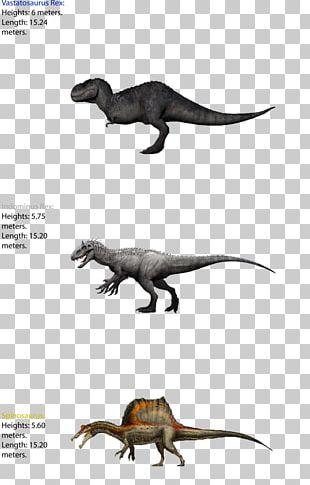 Tyrannosaurus Dinosaur Size Spinosaurus Giganotosaurus Carnotaurus PNG