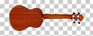 Ukulele Musical Instruments Guitar Tenor String Instruments PNG