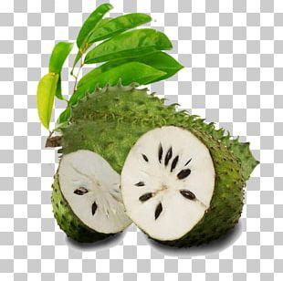 Juice Organic Food Soursop Tropical Fruit PNG