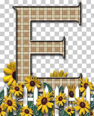 Letter Case English Alphabet Flower PNG