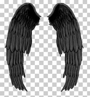 Fallen Angel Drawing Darkness PNG