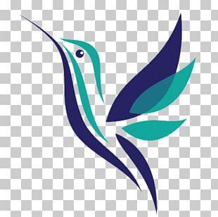 Hummingbird Beak PNG