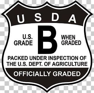 United States Logo Label Grading In Education PNG