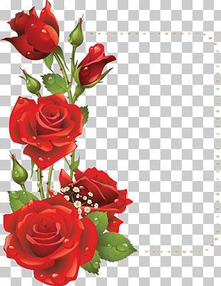 Flower Rose Red Frame PNG