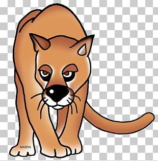 Whiskers Black Panther Cat Red Fox PNG