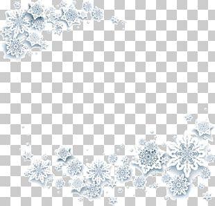 Snowflake Crystal White PNG