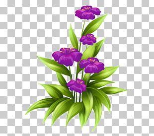 Floral Design Flower Bouquet Portable Network Graphics PNG