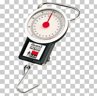 Measuring Scales Spring Scale Fish Scale Angling PNG