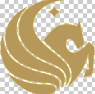 University Of Central Florida College Of Business Administration Pegasus Drive UCF Knights Women's Basketball PNG
