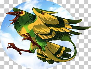 Bird Parrot Beak Feather PNG