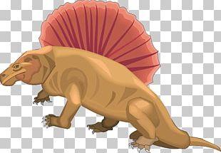 Cretaceous–Paleogene Extinction Event Dinosaur Dorsal Fin Fish Fin Dimetrodon PNG
