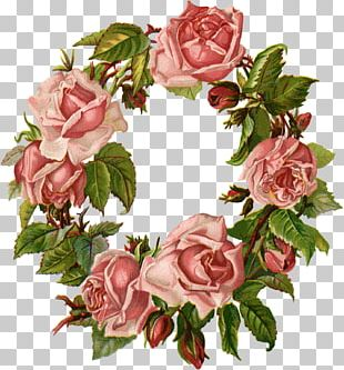 Cut Flowers Wreath Garden Roses Floral Design PNG
