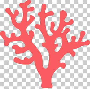 Coral Reef Deep-water Coral Alcyonacea Red Coral PNG